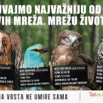 """""""Nijedna vrsta ne umire sama"""" – nova kampanja Telekom Srbija"""